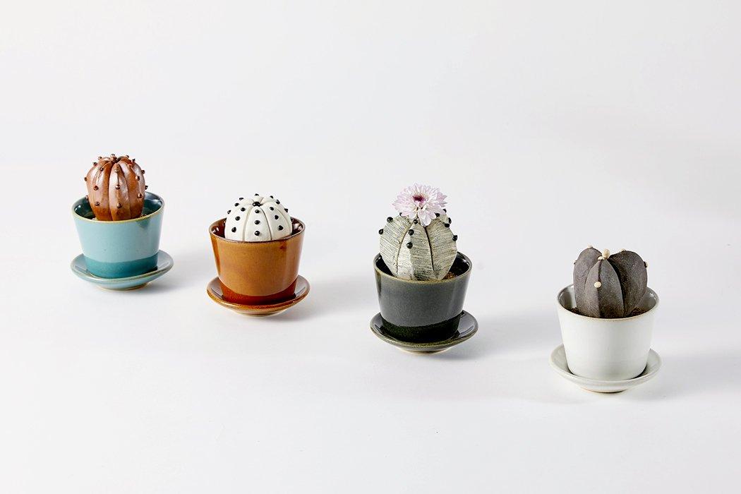 陶植( とうしょく)Ceramic Botanical