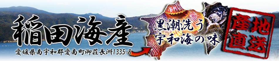 岩牡蠣・緋扇貝・愛南かきの販売 愛媛県 愛南町 稲田海産