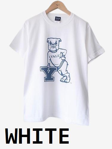 カレッジプリントTee 【YALE】 unisex
