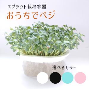 おうちでベジ〜スプラウト栽培専用容器〜(選べる3色)