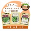 【2021年鍋野菜セット】有機種子/水菜・白菜エミコ・青首宮重大根の商品画像