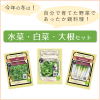 <img class='new_mark_img1' src='//img.shop-pro.jp/img/new/icons1.gif' style='border:none;display:inline;margin:0px;padding:0px;width:auto;' />【鍋野菜セット】〜有機種子/水菜・白菜・大根