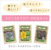 【エディブルフラワー(食用花)セット】〜有機種子/ボリジ・ナスタチウム・ビオラ