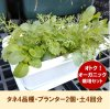 【送料無料】おうちでオーガニック栽培〜栽培キット/ベビーリーフ&ハーブ