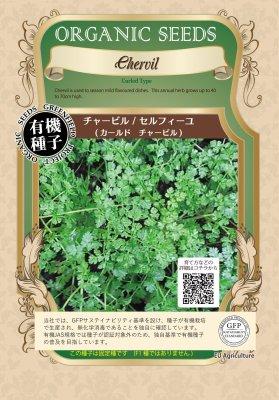 チャービル/セルフィーユ(小袋:0.70g)【有機種子・固定種】(大袋サイズも有ります)