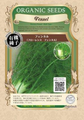 フェンネル(小袋:18粒)【有機種子・F1種】(大袋サイズも有ります)