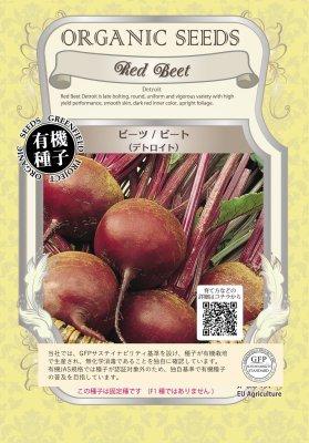 ビーツ/ビート(小袋:1.90g)【有機種子・固定種】(大袋サイズも有ります)