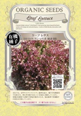 リーフレタス<ロロロッササニーレタス系/緑&赤混色>(小袋:0.90g)【有機種子・固定種】(大袋サイズも有りま…