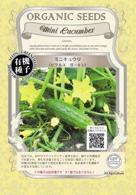ミニキュウリ(小袋:0.7g)【有機種子・固定種】(大袋サイズも有ります)