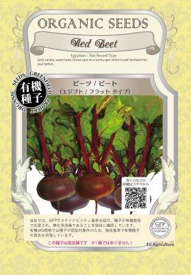 ビーツ/ビート(小袋:1.40g)【有機種子・固定種】(大袋サイズも有ります)
