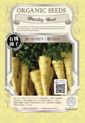 ルートパセリ/根パセリ(小袋:0.60g)【有機種子・固定種】(大袋サイズも有ります)