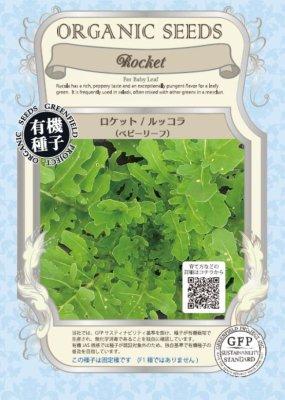 ベビーリーフロケット(小袋:5.00g)【有機種子・固定種】(大袋サイズも有ります)
