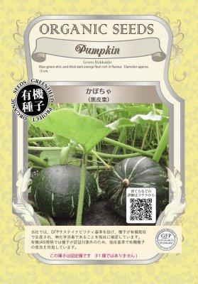 かぼちゃ(小袋:15粒)【有機種子・固定種】(大袋サイズも有ります)