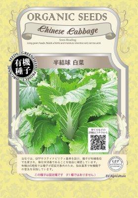 半結球白菜(小袋:0.80g)【有機種子・固定種】(大袋サイズも有ります)