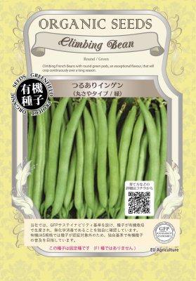 つるありインゲン(小袋:15粒)【有機種子・固定種】(大袋サイズも有ります)