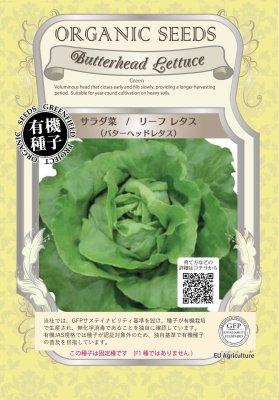 サラダ菜/リーフレタス(小袋:0.04g)【有機種子・固定種】(大袋サイズも有ります)