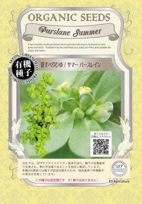 夏すべりひゆサマーパースレイン(小袋:0.40g)【有機種子・固定種】(大袋サイズも有ります)