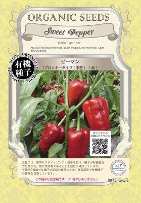ピーマン(小袋:0.3g)【有機種子・固定種】(大袋サイズも有ります)