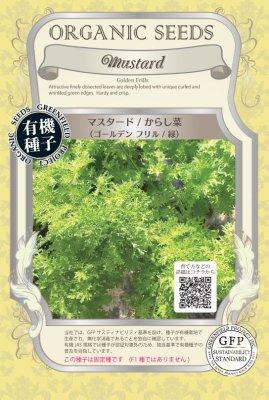 マスタード/からし菜(小袋:0.8g)【有機種子・固定種】(大袋サイズも有ります)