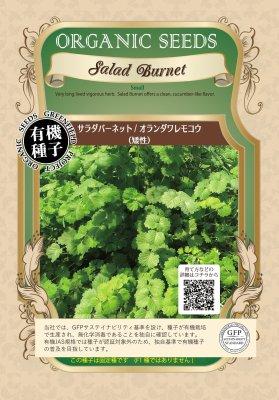 サラダバーネット/オランダワレモコウ(小袋:0.2g)【有機種子・固定種】(大袋サイズも有ります)