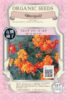 フレンチマリーゴールド(小袋:0.06g)【有機種子・固定種】(大袋サイズも有ります)