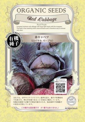 赤キャベツ(小袋:0.3g)【有機種子・固定種】(大袋サイズも有ります)