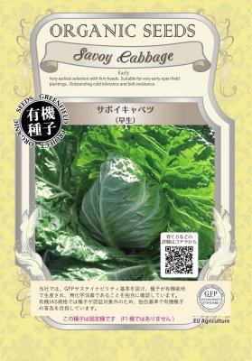 サボイキャベツ(小袋:0.4g)【有機種子・固定種】(大袋サイズも有ります)