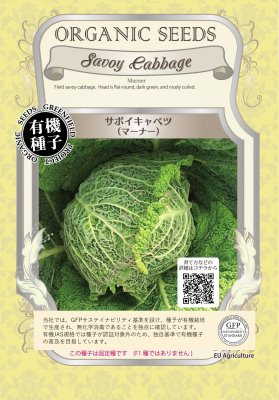 サボイキャベツ(小袋:0.25g)【有機種子・固定種】(大袋サイズも有ります)