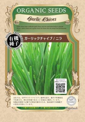 ガーリックチャイブ(小袋:0.5g)【有機種子・固定種】(大袋サイズも有ります)