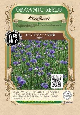 コーンフラワー/矢車菊[青色]【有機種子・固定種】
