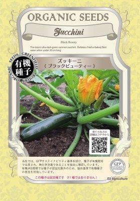 ズッキーニ(小袋:5.3g)【有機種子・固定種】(大袋サイズも有ります)