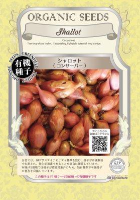 シャロット(小袋:0.08g)【有機種子・F1種】(大袋サイズも有ります)