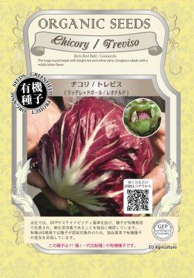 チコリ/トレビス(小袋:0.03g)【有機種子・F1種】(大袋サイズも有ります)