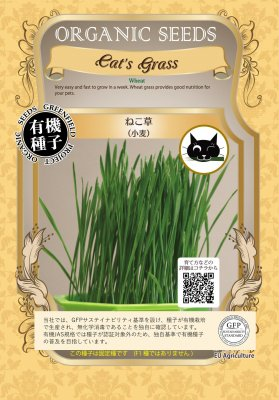 ねこ草[小麦](サイズ:S/M)【有機種子・固定種】