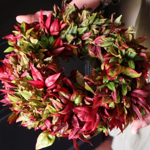 赤色の葉だけでお作りしたナチュラルなドライリース(現品)