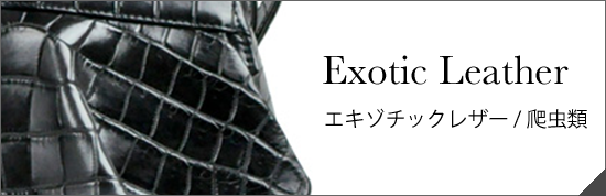 Exotic Leather エキゾチックレザー/爬虫類