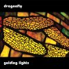guiding lights / Dragonfly