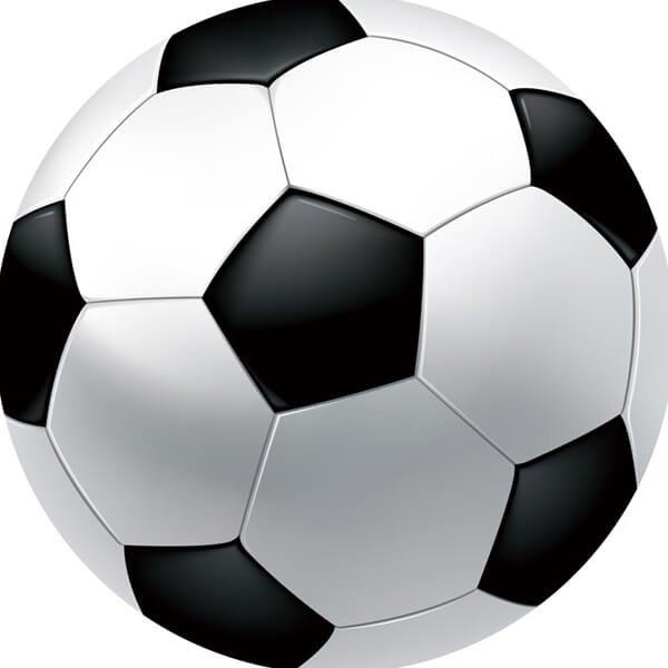 サッカーボール型マット シンプルな白黒タイプ【画像4】