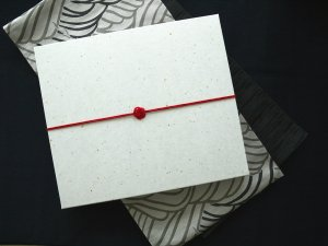 BOX2(商品が2枚入る薄型の箱|30.5cm×35cm×3.7cm)