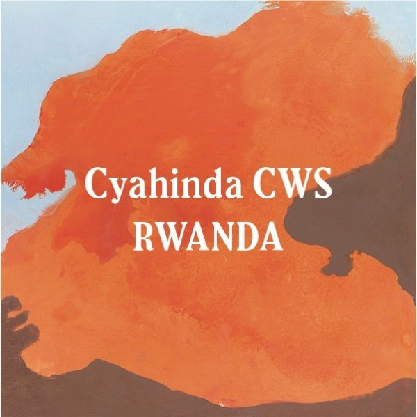 <img class='new_mark_img1' src='//img.shop-pro.jp/img/new/icons29.gif' style='border:none;display:inline;margin:0px;padding:0px;width:auto;' />Rwanda Cyahinda CWS 200g