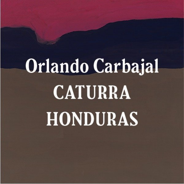<img class='new_mark_img1' src='//img.shop-pro.jp/img/new/icons5.gif' style='border:none;display:inline;margin:0px;padding:0px;width:auto;' />Honduras Orlando Carbajal Caturra Dark Roast 200g