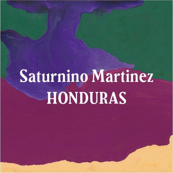 <img class='new_mark_img1' src='//img.shop-pro.jp/img/new/icons5.gif' style='border:none;display:inline;margin:0px;padding:0px;width:auto;' />Honduras Saturnino Martinez 200g