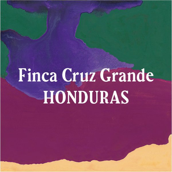 <img class='new_mark_img1' src='//img.shop-pro.jp/img/new/icons29.gif' style='border:none;display:inline;margin:0px;padding:0px;width:auto;' />Honduras Finca Cruz Grande 200g
