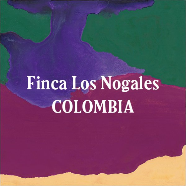 <img class='new_mark_img1' src='//img.shop-pro.jp/img/new/icons5.gif' style='border:none;display:inline;margin:0px;padding:0px;width:auto;' />Colombia Finca Los Nogales Roasty 200g