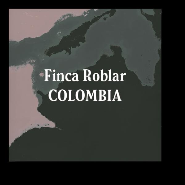 <img class='new_mark_img1' src='https://img.shop-pro.jp/img/new/icons29.gif' style='border:none;display:inline;margin:0px;padding:0px;width:auto;' />Colombia Finca El Roblar Dark Roast 200g