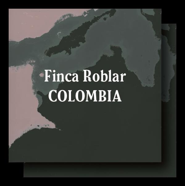 <img class='new_mark_img1' src='https://img.shop-pro.jp/img/new/icons29.gif' style='border:none;display:inline;margin:0px;padding:0px;width:auto;' />Colombia Finca El Roblar Dark Roast 400g (200g×2)