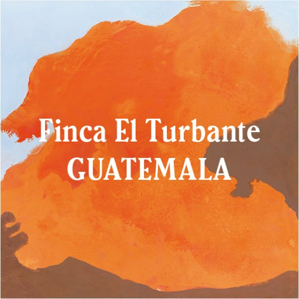 <img class='new_mark_img1' src='//img.shop-pro.jp/img/new/icons29.gif' style='border:none;display:inline;margin:0px;padding:0px;width:auto;' />Guatemala Finca El Turbante 400g