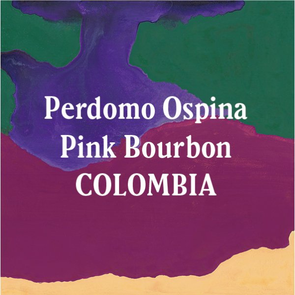 <img class='new_mark_img1' src='//img.shop-pro.jp/img/new/icons5.gif' style='border:none;display:inline;margin:0px;padding:0px;width:auto;' />Colombia Pink Bourbon-Perdomo Ospina 400g