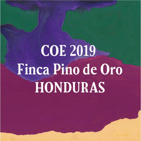 <img class='new_mark_img1' src='//img.shop-pro.jp/img/new/icons29.gif' style='border:none;display:inline;margin:0px;padding:0px;width:auto;' />Honduras COE Finca Pino de Oro 100g