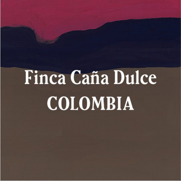 <img class='new_mark_img1' src='//img.shop-pro.jp/img/new/icons29.gif' style='border:none;display:inline;margin:0px;padding:0px;width:auto;' />Colombia Finca Caña Dulce Dark Roast 200g